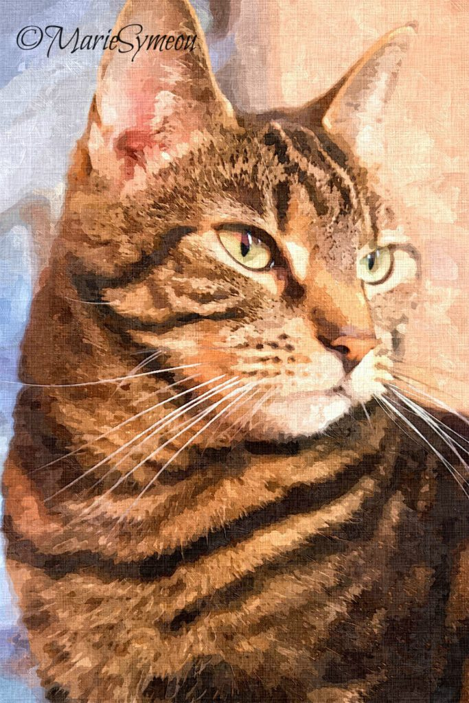 Oil painting purrfection